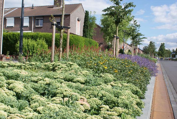 Onderhoudsarme tuinen - Geplaveid voor allee tuin ...