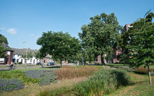 Pastoor Wijnhovenpark - Venray