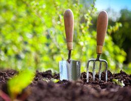 Bereid je tuin voor op de lente