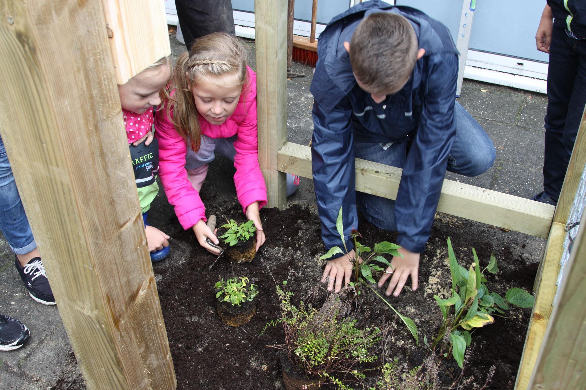 Vierkante Meter Tuin : Vierkante meter tuin te koop in dilbeek tweedehands
