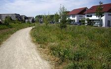 Natuurontwikkeling gemeente Boxtel