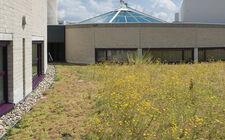 Groen-blauw-dak gemeentehuis Landgraaf