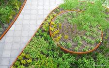 automatische beregening op een daktuin