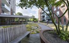 Daktuin bij wooncomplex in Venlo