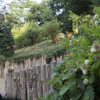 voorbeeld tuinen