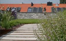 Aanleg daktuin NRE-terrein Eindhoven