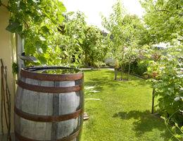 Maak jouw tuin waterklaar