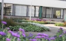 GreentoColour-beplating in voortuin Citaverde college Roermond