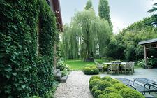Groene tuin