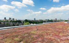 Fontys Hogeschool Eindhoven kiest voor een slim groen-blauw dak
