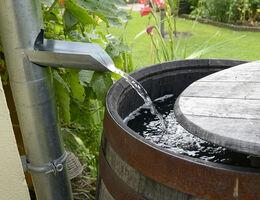 waterklare tuin