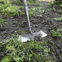 Tuinonderhoud in mei