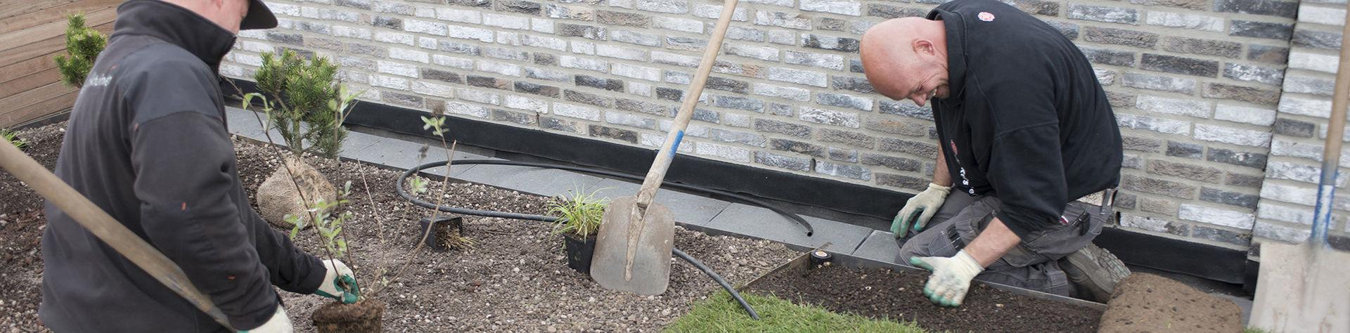 Voorman aanleg daktuinen