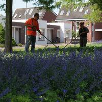onderhoud onderhoudsarme tuin