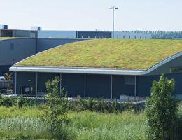 subsidie solargroendak